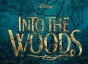 IntoWoods