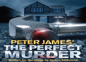 Perfect Murder new